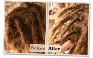 Dreadlock Maintenance Gold Coast to Byron Bay